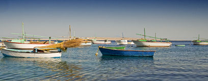 Fellucas de pêche sur leurs amarrages Images libres de droits