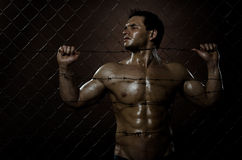 Felon man. The very muscular handsome felon guy , misery  out of netting   steel fence with  barbed wire Royalty Free Stock Photo