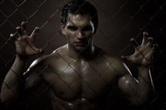 Felon man. The very muscular handsome felon guy ,  out of netting   steel fence Stock Photo