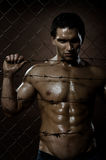 Felon man. The very muscular handsome felon guy ,  out of netting   steel fence Stock Images