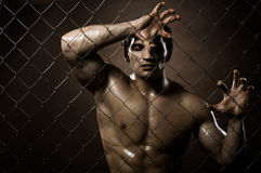 Felon man. Horizontal closeup portrait  felon guy ,  out of netting   steel fence Royalty Free Stock Photo
