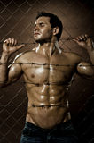 Felon man. The very muscular handsome felon guy , misery  out of netting   steel fence with  barbed wire Stock Image