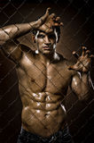 Felon man. The very muscular handsome felon guy ,  out of netting   steel fence Stock Photos