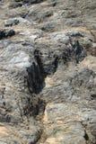 Felsen auf dem Strand lizenzfreie stockbilder