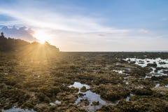 Felsen auf dem Strand mit Sonnenlicht stockfoto