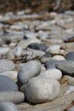 Felsen auf einem Strand Stockfotografie