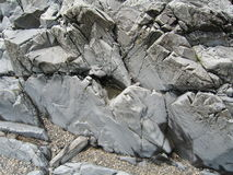 Felsen auf Maine-Strand Stockfotografie