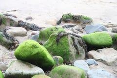 Felsen auf Strand Stockfoto