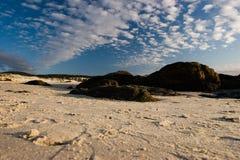 Felsen auf Strand Stockfotos
