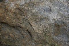Felsen auf Wanderweg Stockbilder