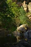 Felsen, Bäume und Wasser bei Fragas de Sao Simao Stockfoto