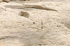 Felsen-Beschaffenheit lizenzfreies stockbild