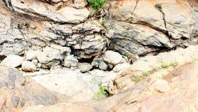 Felsen in Chunchi fällt nahe Bangalore Stockfotografie