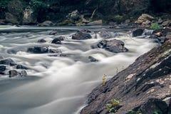 Felsen in den Stromschnellen auf dem Yamaska-Fluss in Granby, Quebec stockfotos