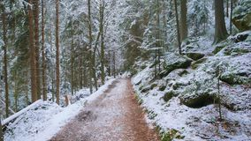 Felsen in der berühmten felsigen Stadt von Adrspach-Teplice schaukelt Winter Lizenzfreies Stockfoto