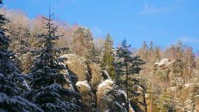 Felsen in der berühmten felsigen Stadt von Adrspach-Teplice schaukelt Winter Stockfoto
