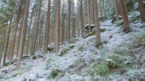 Felsen in der berühmten felsigen Stadt von Adrspach-Teplice schaukelt Winter Lizenzfreie Stockfotografie