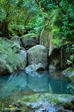 Felsen, der in einem hawaiischen Pool entlang einem Strom sich reflektiert stockfotografie