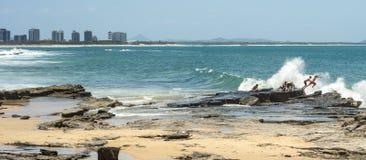 Felsen, der Maloolaba-Sonnenschein-Küste Queensland springt Lizenzfreies Stockfoto