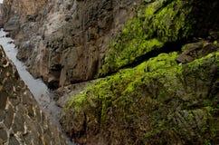 Felsen an der Seeküste Stockfotos