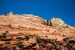 Felsen des verwitterten Sandsteins in Zion National Park, Utah, USA Lizenzfreie Stockfotos