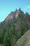 Felsen in einem sibirischen Taiga Lizenzfreies Stockbild