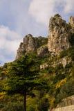 Felsen gegen den blauen Himmel und den Baum Nahaufnahme montenegro Lizenzfreie Stockbilder