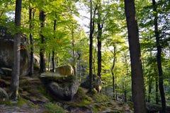 Felsen, Himmel, Berge ein Wald stockfoto