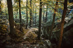 Felsen, Himmel, Berge ein Wald lizenzfreies stockbild