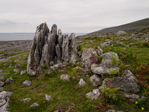 Felsen im Burren in Irland Lizenzfreies Stockbild