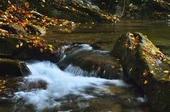 Felsen im Flussbett Stockbild