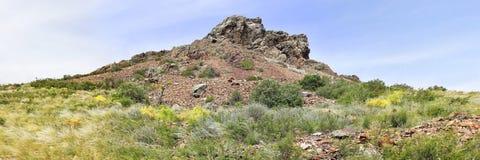 Felsen im grünen Gras Stockbild