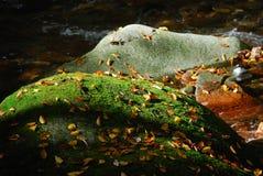 Felsen im Herbstfluß Stockbild