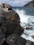 Felsen im italienischen Meer Stockfotografie
