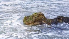 Felsen im Meer Stockbilder