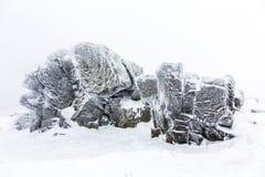 Felsen im Schnee vor einem Blizzard Stockfotos