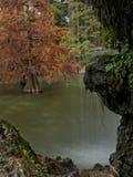 Felsen im Teich mit Wasserfall Stockbild
