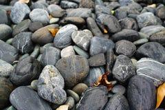 Felsen im Wasser Stockbilder