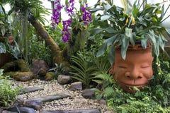 Felsen, Kies, rechteckige Steinplatte im tropischen Garten, Grünpflanze und purpurrote Orchidee stockfotos