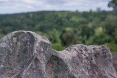 Felsen, Klippen, Waldgrünhintergrund Stockfotos
