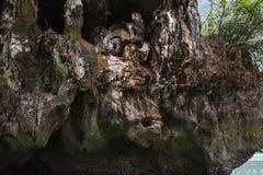 Felsen mögen einen Affen Lizenzfreie Stockfotos