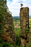 Felsen mit Bäumen Lizenzfreie Stockbilder