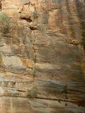 Felsen mit gold-farbigen Einbeziehungen Lizenzfreie Stockfotografie