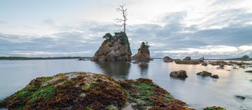 Felsen mit Kormoranvögeln im Ozean lizenzfreie stockfotos