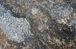 Felsen mit Moos Für Design mit Kopienraum für Text oder Bild Stockbild