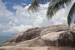 Felsen mit Palme Stockbilder