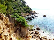 Felsen nahe dem Meer Stockfotos