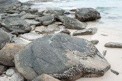 Felsen, Sand und Meer Lizenzfreie Stockfotografie