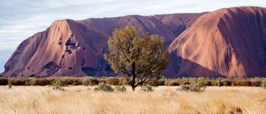 Felsen Uluru - Ayers Stockfotos