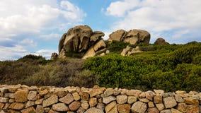 Felsen und Anlagen Lizenzfreies Stockfoto